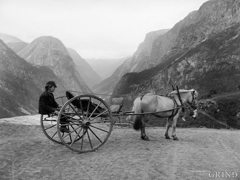 The coachman with his carriage at Stalheim