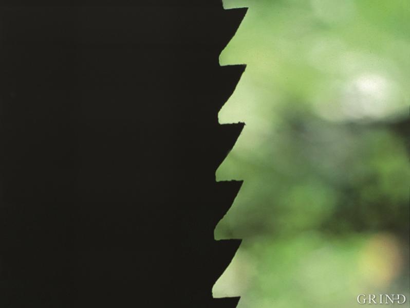 A saw blade at the Stekka sawmill