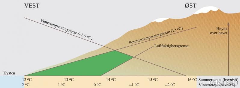 Skjematisk framstilling av utbredelsesområdet til en kystplante forklart ut fra temperatur og luftfuktighet